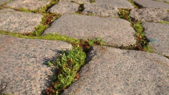 Granite cobble stones in Finland