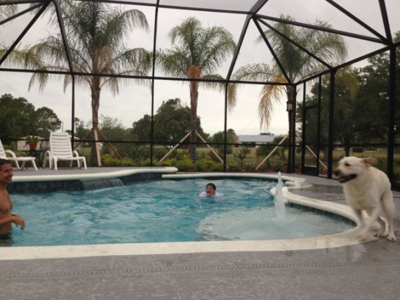 Florida family enjoying backyard pool