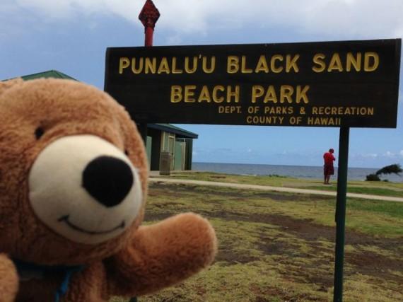 Hawaiian Black Sand Beach State park