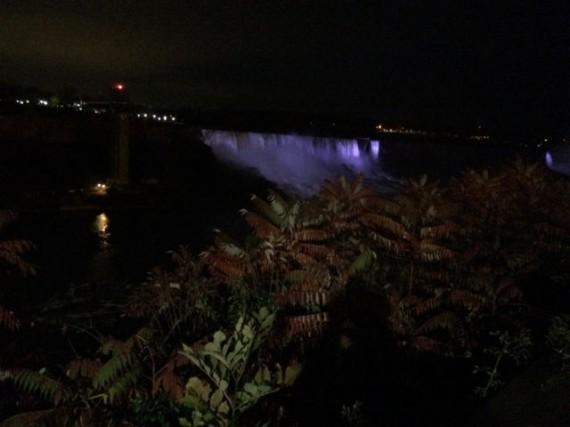 Niagara Falls at night from the car