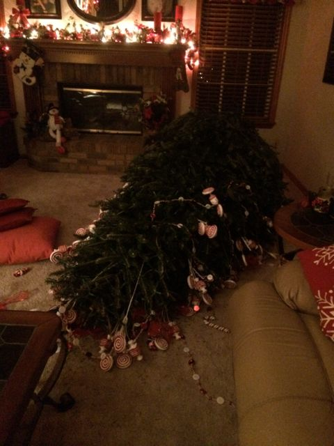 Fallen Christmas tree in Family room