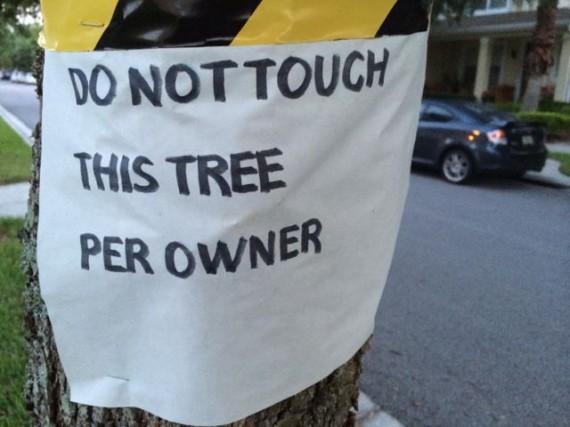 Tree warning sign