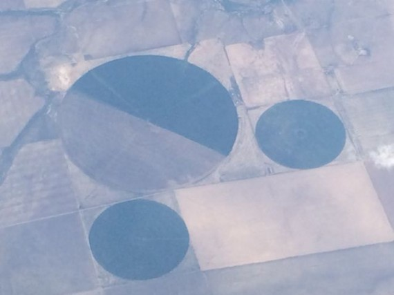 Mickey Mouse shaped crop circles from Delta flight