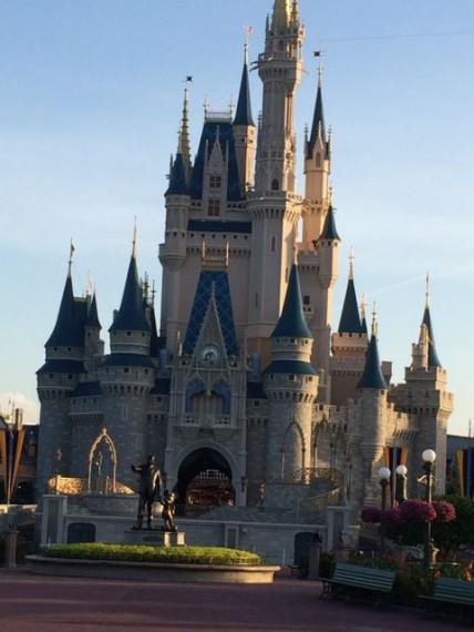 Disney Management Consultant