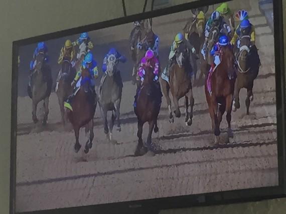 2015 Kentucky Derby homestretch photo
