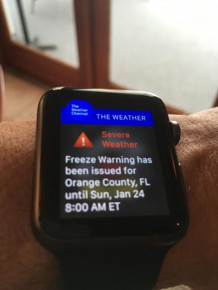 2016 Orlando Freeze warning