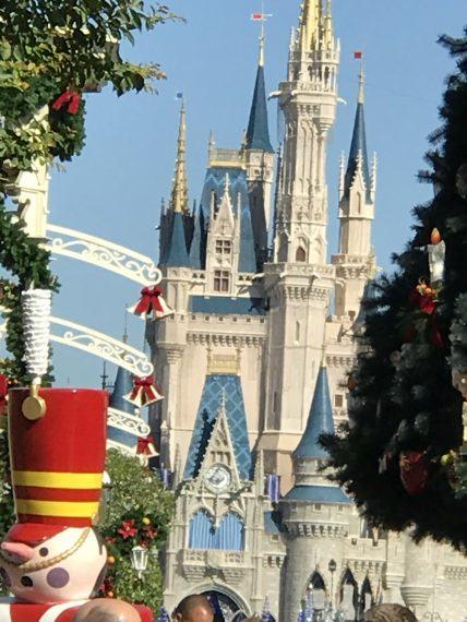 Cinderella Castle and Magic Kingdom Christmas Tree