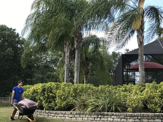 Orlando homeowner
