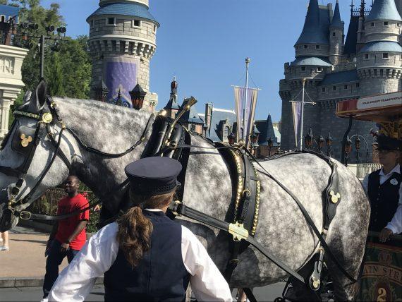 Disney Customer Service speaker