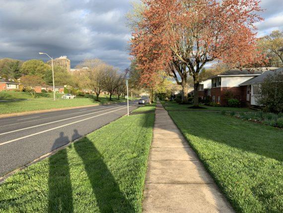 Residential sidewalk in spring