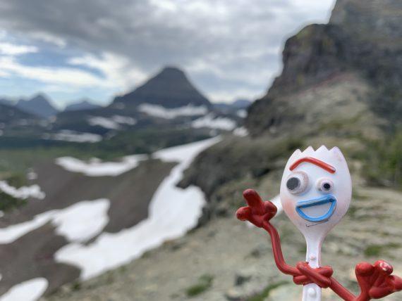 Forky in Glacier National Park