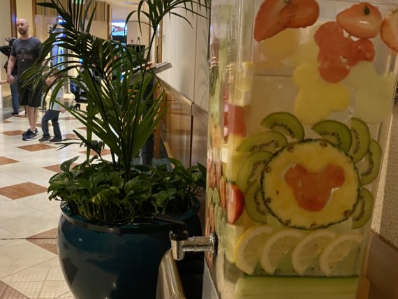 water cooler with mickey head shaped fruit