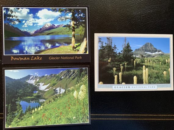 Glacier postcards
