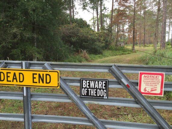 dead end sign on road gate