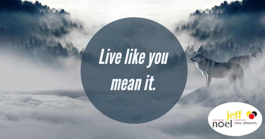 Jeff Noel quote